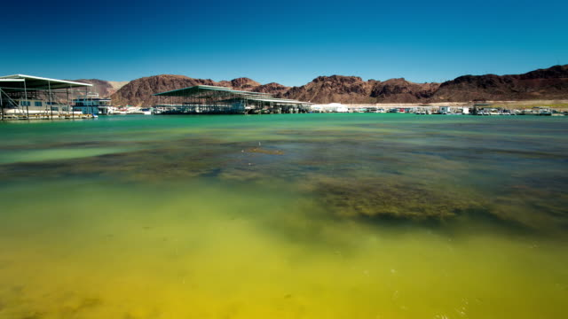 see lake mead - fluss colorado river stock-videos und b-roll-filmmaterial