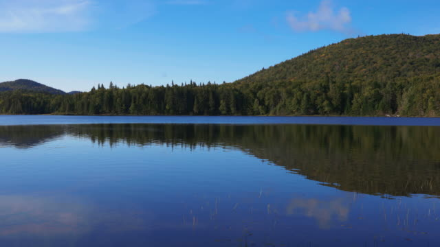 lake monroe mont tremblant national park, quebec, canada - parc national stock videos & royalty-free footage