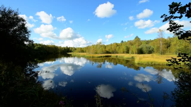 Lake Moorweiher, Red moor, Rotes Moor, Gersfeld, Rhön Mountain Range, Hesse, Germany