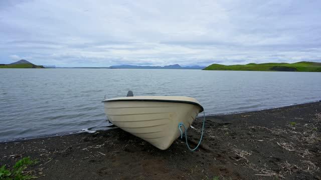 lake myvatn in summer, skutustadir, myvatn region, nordurland vestra, northern region, iceland - invertebrate stock videos & royalty-free footage