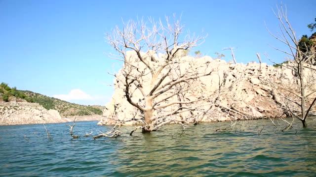 Lake auf schmutzig tree