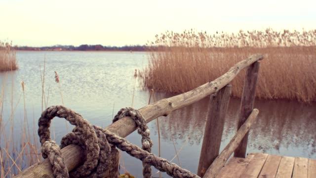 lake platform - reed grass family stock videos & royalty-free footage