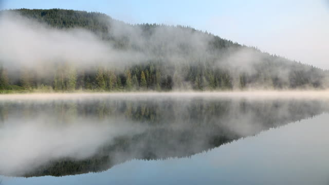 hd lake reflection with fog - pine stock videos and b-roll footage