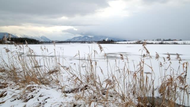 Lake Riegsee in winter, Riegsee, Murnau, Upper Bavaria, Bavaria, Germany, European Alps