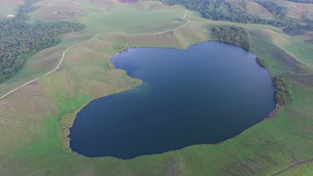 vídeos y material grabado en eventos de stock de lake sentani papua. - cabaña de paja