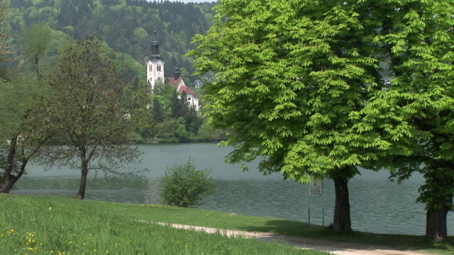 ms, lake shore, island with church of the assumption of mary in distance, lake bled, gorenjska, slovenia - lago di bled video stock e b–roll