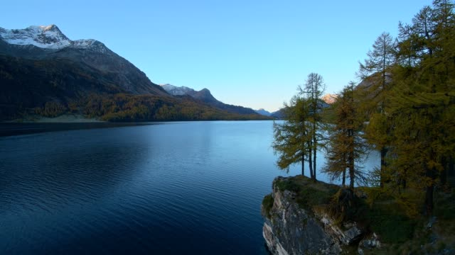 lake silsersee in the morning with colorful larch trees in autumn, lake silsersee, sils im engadin, engadin, grisons, switzerland, european alps - rippled stock videos & royalty-free footage