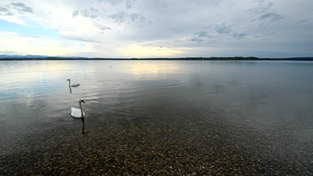 Starnberger See Videos and B-Roll Footage | Getty Images