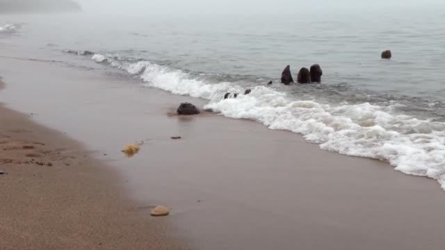 lake superior beach - lago superiore video stock e b–roll