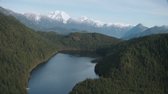 aerial lake surrounded by forested hillside with snow-capped mountains beyond / vancouver, british columbia, canada - vancouver canada stock videos and b-roll footage