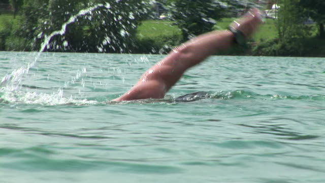 hd: lake swimmer - freestyle swimming stock videos and b-roll footage