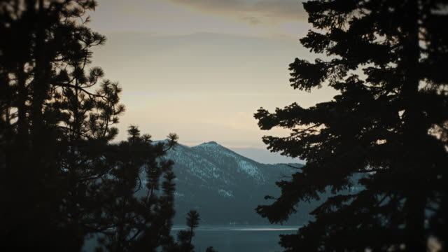 Lake Tahoe Vista from Shadowy Forest