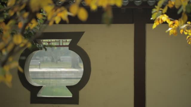 ms selective focus lake through gazebo's window in park / beijing, china - gazebo stock videos and b-roll footage
