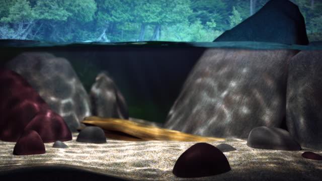 3D Lake underwater loop 2