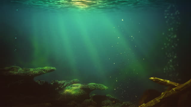 Lake underwater Seamless loop 2