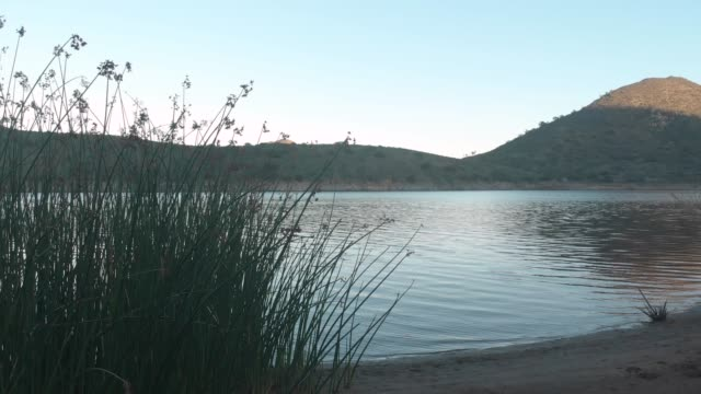 lake - süßwasser stock-videos und b-roll-filmmaterial