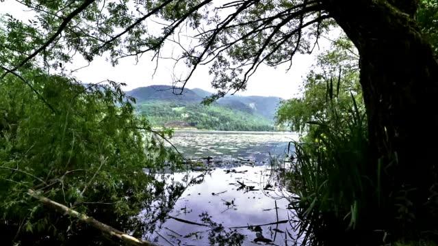 lake - vento stock videos & royalty-free footage