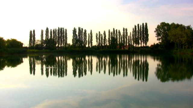 lake - focus on foreground stock videos and b-roll footage