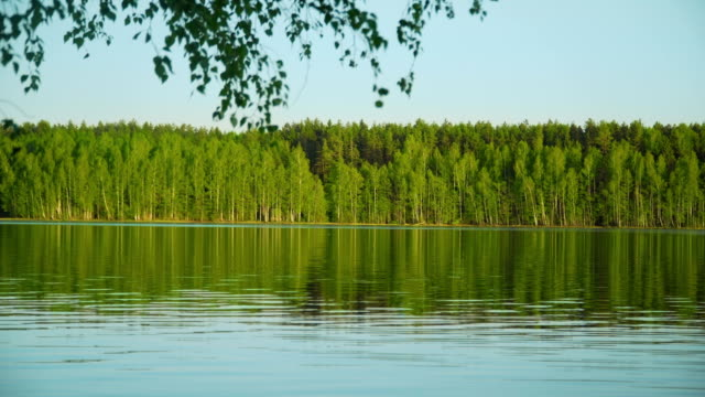 see lake - schweden stock-videos und b-roll-filmmaterial