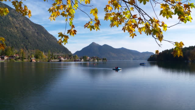 lake walchensee in autumn with pedal boat and yellow leaves. lake walchensee, bad tölz-wolfratshausen, jachenau, kochel am see, bavaria, bavarian alps, germany. - tourism stock-videos und b-roll-filmmaterial