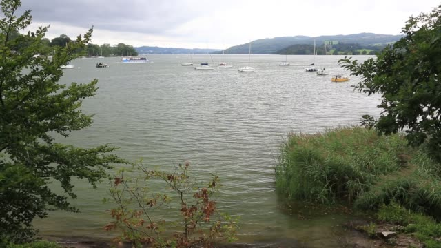 lake windermere turned green by an algal bloom. - aquatic organism stock videos & royalty-free footage