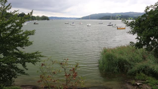 lake windermere turned green by an algal bloom. - cianobatterio video stock e b–roll