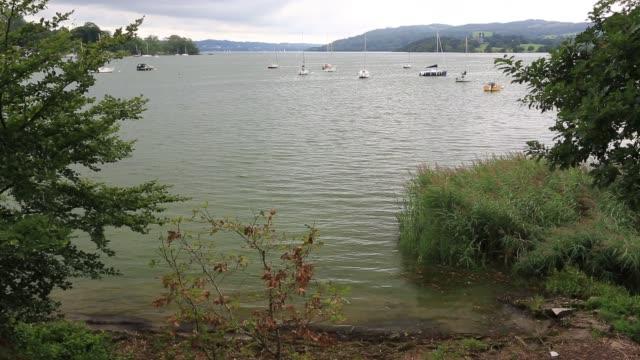 lake windermere turned green by an algal bloom. - aquatic organism stock videos & royalty-free footage