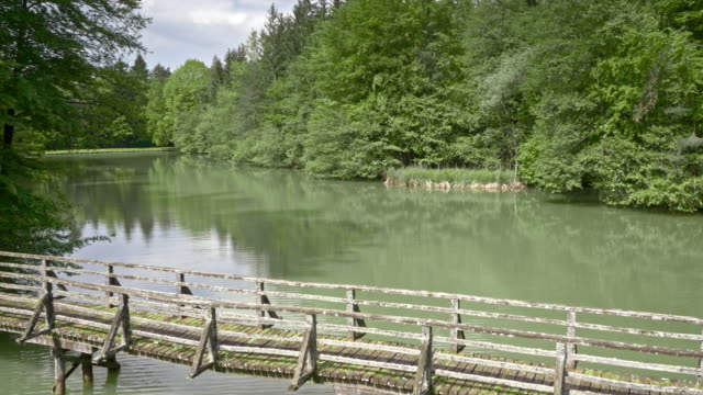 AERIAL Lake with a wooden bridge in sunshine