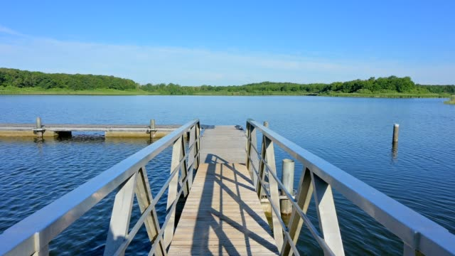 lake with jetty in summer, etang du stock, langatte, sarrebourg, moselle, france - jetty stock videos & royalty-free footage