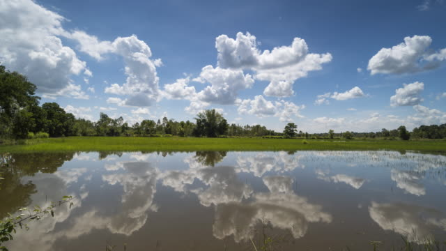 Lake With Reflection Of Cumulus Clouds