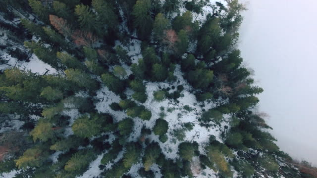 lakeland aerial view - finlandia video stock e b–roll