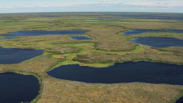 vidéos et rushes de lakes in wetlands in western alaska - hémisphère nord