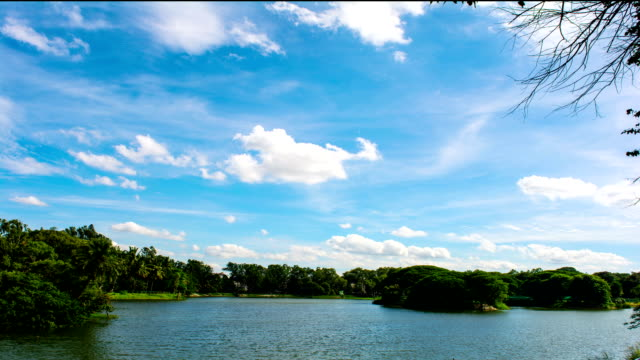 lalbagh lake - hd timelapse video - bangalore stock videos and b-roll footage