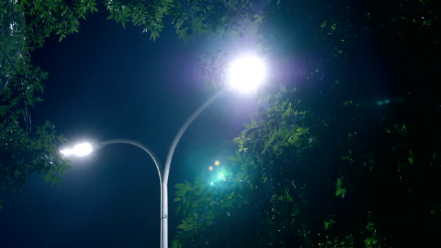 lamp at night - street light stock videos & royalty-free footage