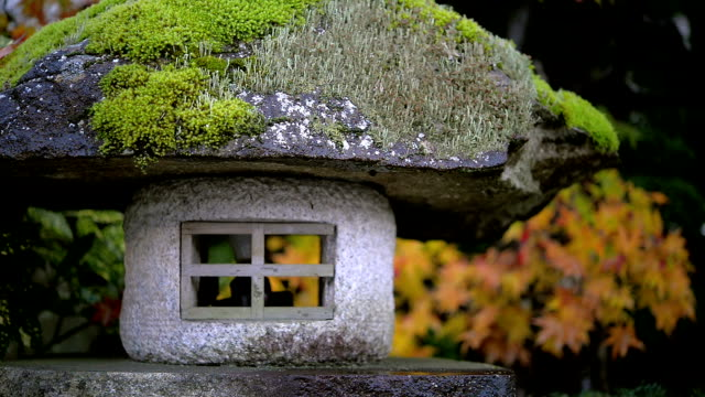 lamp stone with maple tree background - toyama prefecture stock videos and b-roll footage