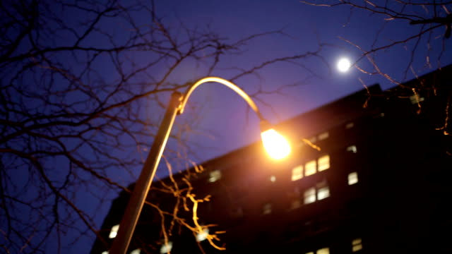 lamppost at night in New York City