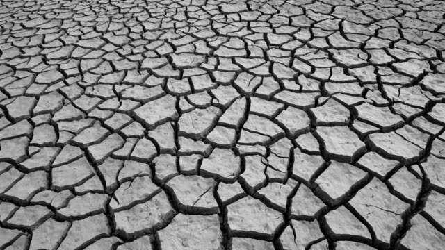 land cracked by draught in the riaño reservoir (embalse), leon province, castilla y leon, spain, europe - arid stock videos & royalty-free footage