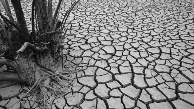 Land cracked by draught in the Riaño reservoir (embalse), Leon province, Castilla y Leon, Spain, Europe