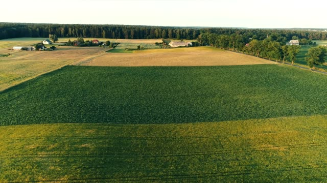 land divided into geometric fields. agriculture - division stock videos & royalty-free footage