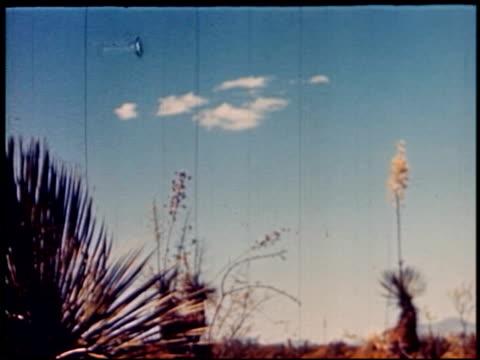 land of geronimo - 14 of 31 - この撮影のクリップをもっと見る 2206点の映像素材/bロール