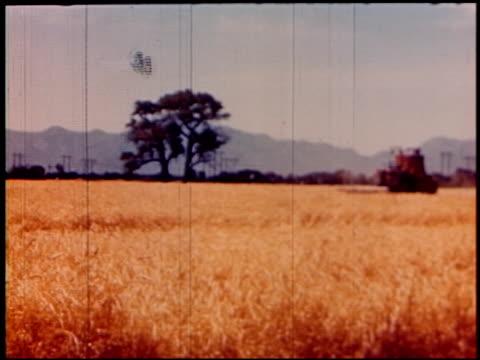 land of geronimo - 20 of 31 - この撮影のクリップをもっと見る 2206点の映像素材/bロール