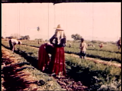 land of geronimo - 21 of 31 - see other clips from this shoot 2206 stock videos and b-roll footage
