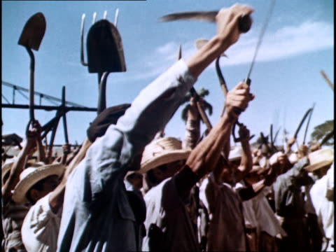 land reforms / redistribution of land to the peasants - propaganda stock-videos und b-roll-filmmaterial