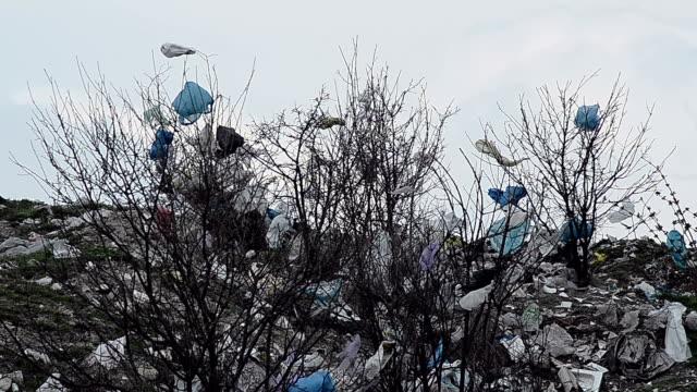 Landfill enviroment