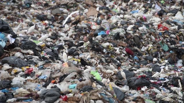 vídeos de stock, filmes e b-roll de landfill - trash dump - depósito de lixo