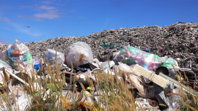 landfill - garbage disposal stock videos and b-roll footage