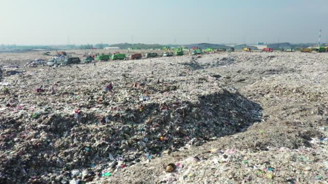 vídeos de stock e filmes b-roll de landfill with garbage - copo descartável