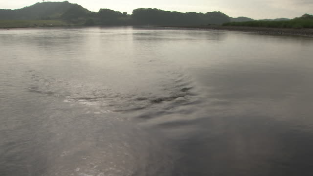 landscape around shimantogawa river, kochi, japan - low tide stock videos & royalty-free footage