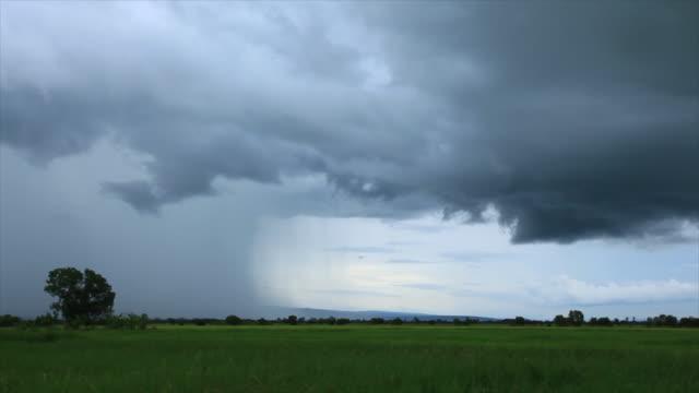 米の国の雲を風景します。 - 熱帯の低木点の映像素材/bロール