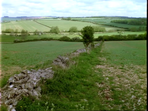 T/L landscape, Cotswold stone wall in foreground, cloud shadows over fields, locked off, Burford Oxon